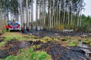 Waldbrand bei Baierbach