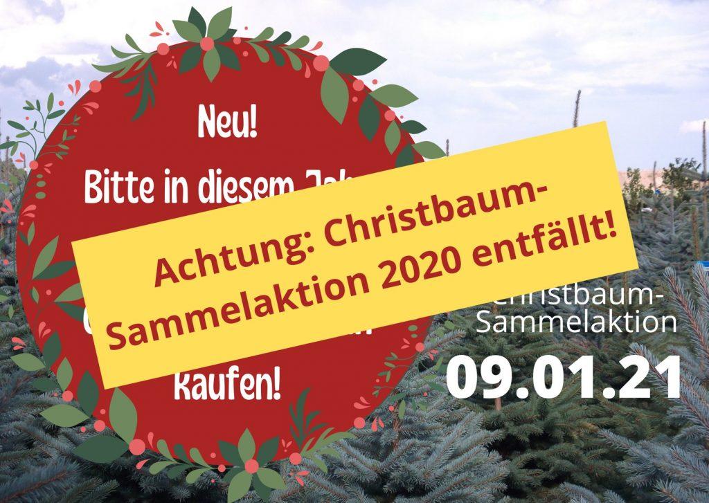 Entfällt: Christbaum-Sammelaktion 2020