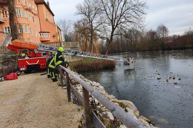 Januar 2020: Säuberung Schlossweiher nach Silvester